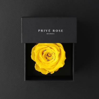 بريفي روز أصفر ميني PRY5