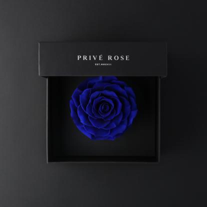 بريفي روز أزرق PRU13