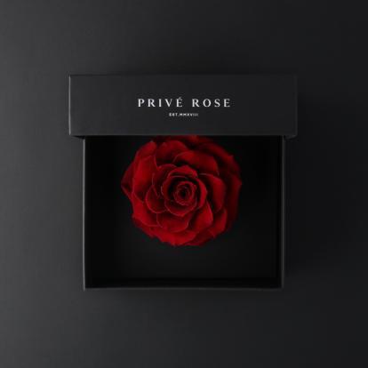 بريفي روز أحمر PRR12