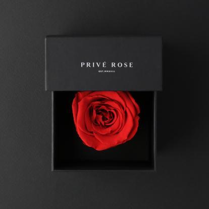 بريفي روز أحمر ميني PRR2