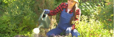 نصائح للعناية بحديقة منزلك